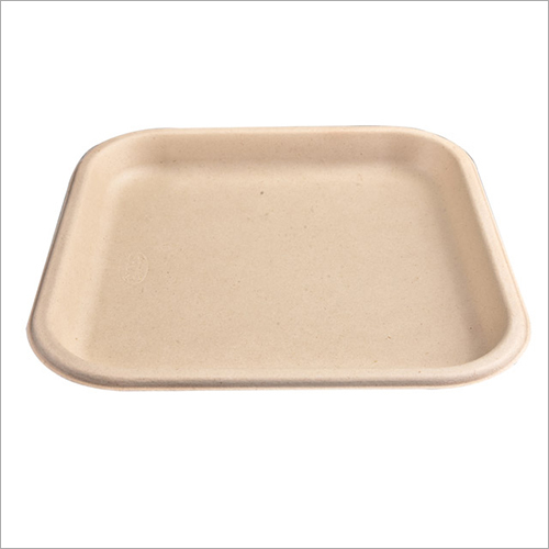 12Inch Biodegradable Dinner Plate