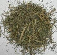 Pitpapada Extract