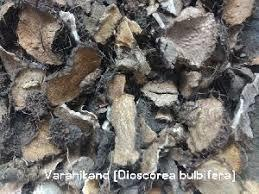Varun Bark Extract