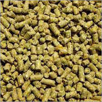 Poultry Feed Raw Material
