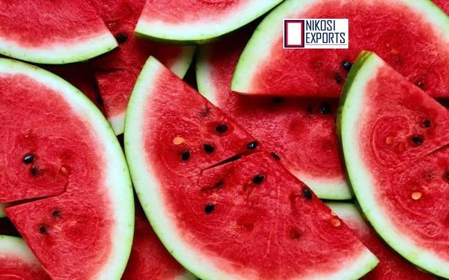 Ice Box- Watermelon