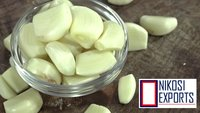 Fresh Peeled Garlic