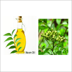 Neem Extract Oil