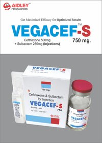 Ceftriaxone 500mg + Sulbactam 250mg Injection