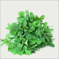 Fenugreek Leaves