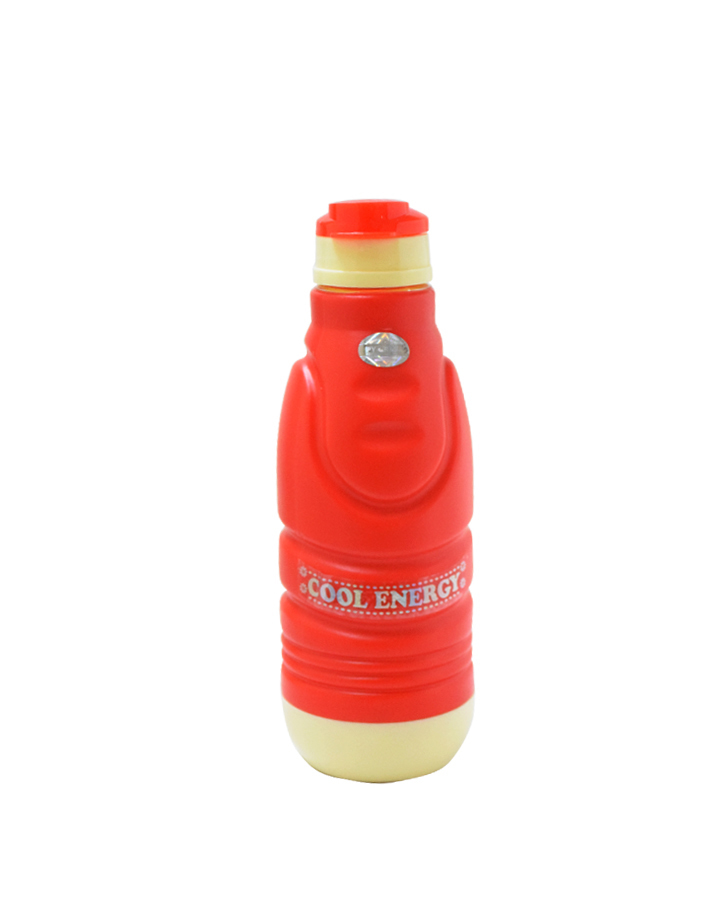 Insulated Water Bottle (Cool Energy)