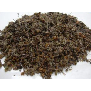 tulsi holy basil leaf dried