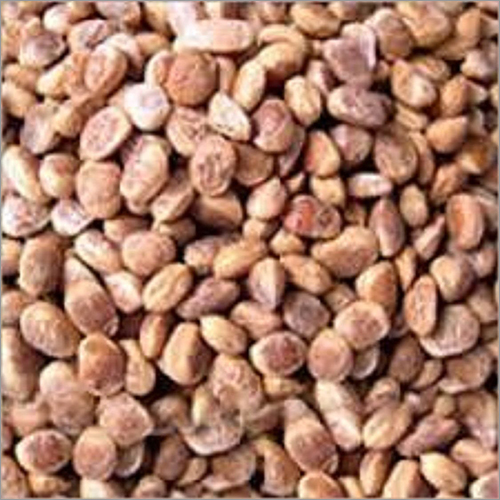 Dry Fruits Buchanania Lanzan Chironji