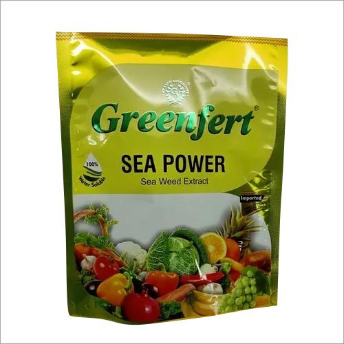 Sea Weed