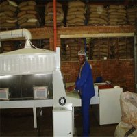 Tunnel Microwave Spices Processing Plant