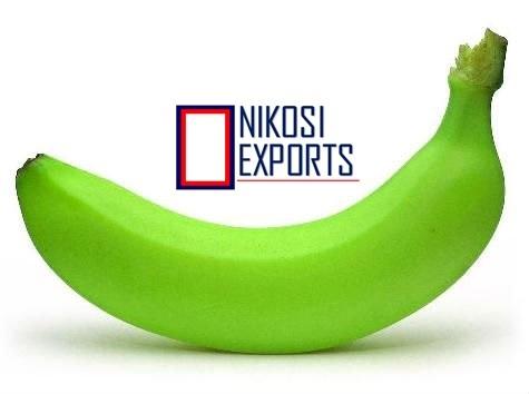 Green Cavendish Bananas