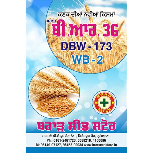 Wheat Brar