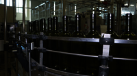 Glass Bottle Conveyor Line