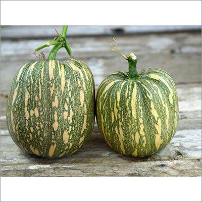 Green & Orange Pumpkin