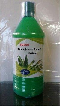 Naagdon Leaf Juice