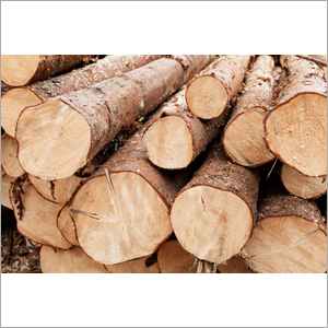 Natural Wood Biomass