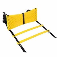 APG Flat Regular Adjustable Speed Agility Ladder (8M With 20 Rungs)