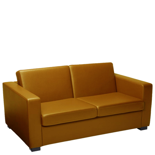 Office Two Seater Leather Sofa