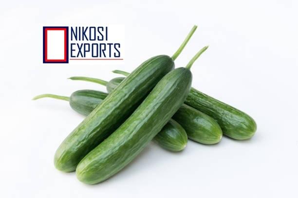 Organic Green Cucumber