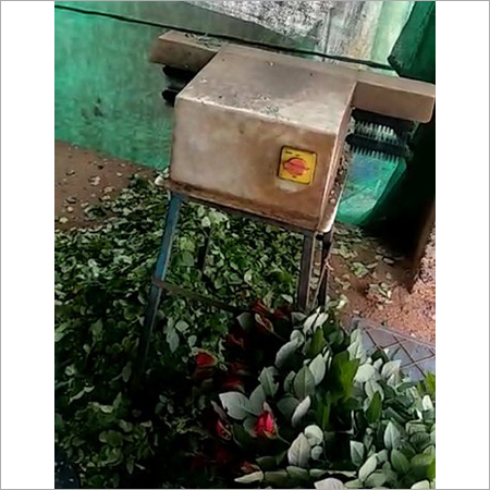 Rose De-Leafing Machine
