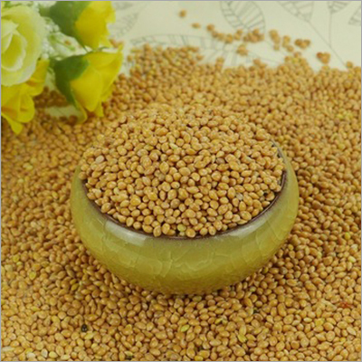 Broom Corn Millet