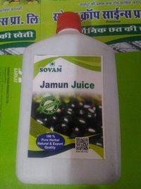 Organic Jamun Juice Rs 120 / LitreGet Latest Price  Minimum Order Quantity: 200 Litre