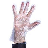 food service gloves