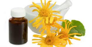 arnica montana oil