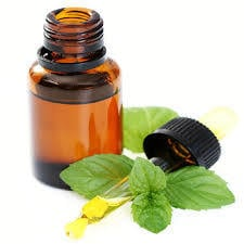 mentha citrata oil