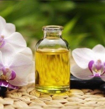 jasmine grandiflora oil