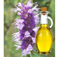 hyssop oil