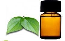 ho leaf oil