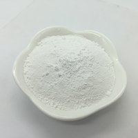Opacifiers (White Pigments)