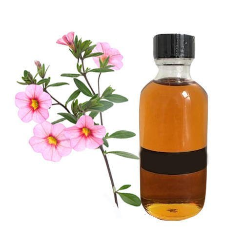 labdanum oil