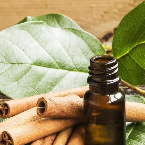 cinnamon leaf hydrosol