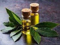 bay leaf hydrosol