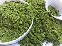 moringa powder(conventional)