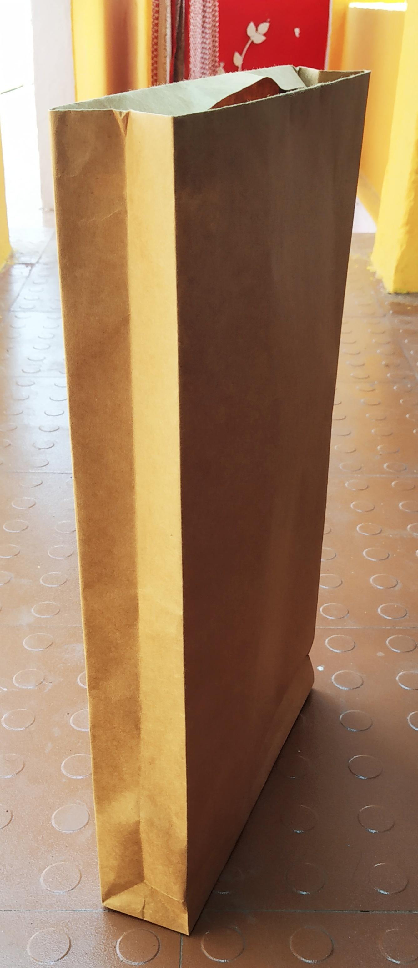 Kraft Paper Envelop / Bag