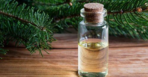 spruce hydrosol