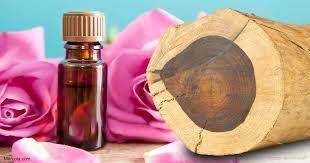 rosewood hydrosol