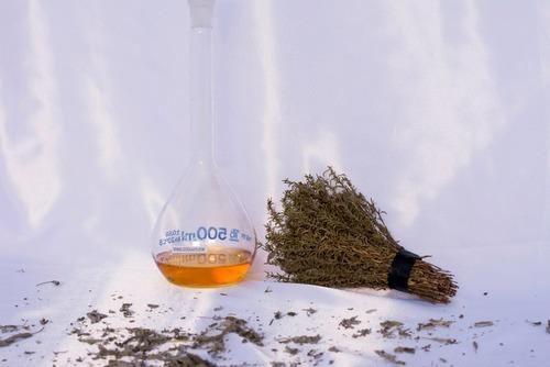 winter savory hydrosol