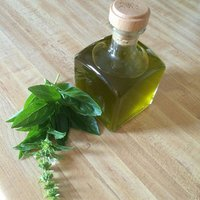 holy basil oil