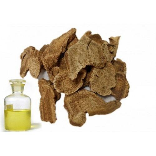 costus root oil