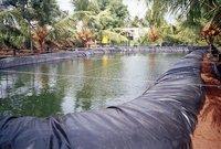 Pond Lining