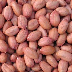 Indian Raw Ground Nuts