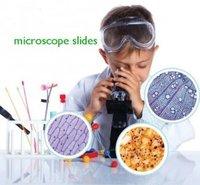 Prepared Slides in Histology For Medical Science