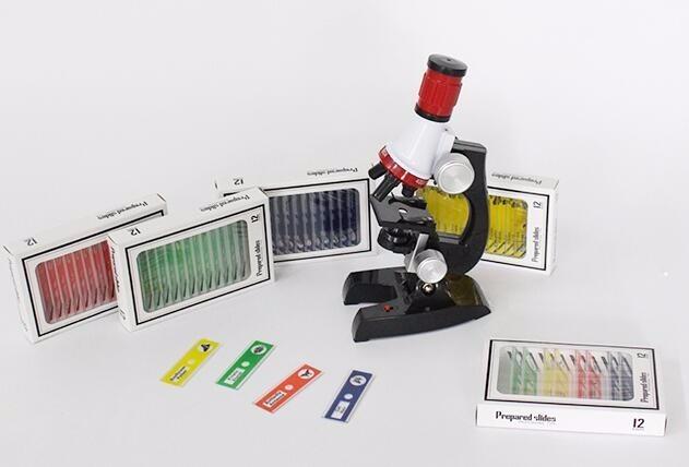12pcs Kids Plastic Microscope Slides Toy