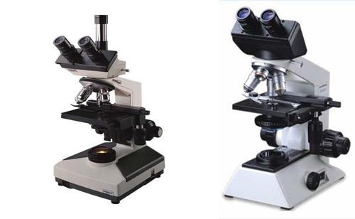 Trinocular Microscope