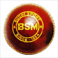 BSM Leather Ball