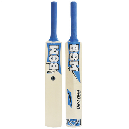 Shimla Willow Pro-T20 Painted Cricket Bat